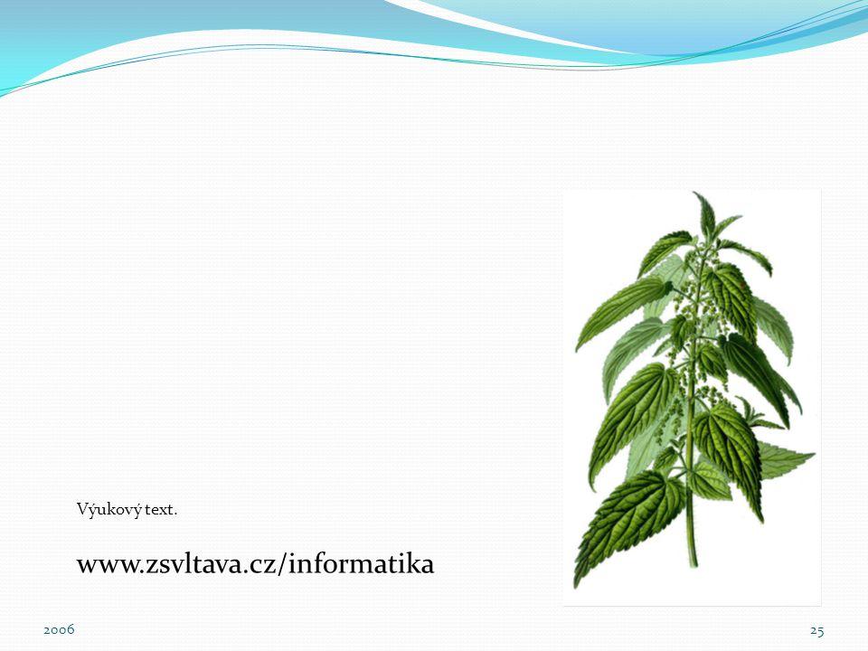 Výukový text. www.zsvltava.cz/informatika 2006