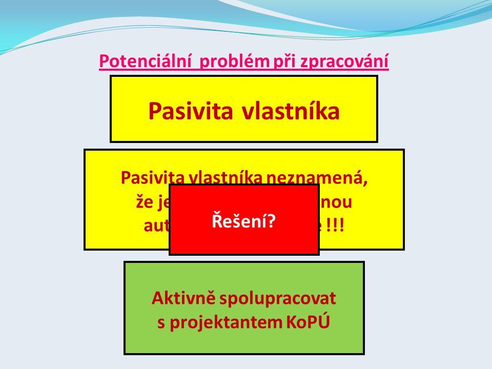 Pasivita vlastníka Potenciální problém při zpracování
