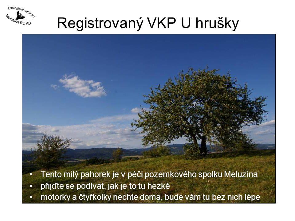 Registrovaný VKP U hrušky