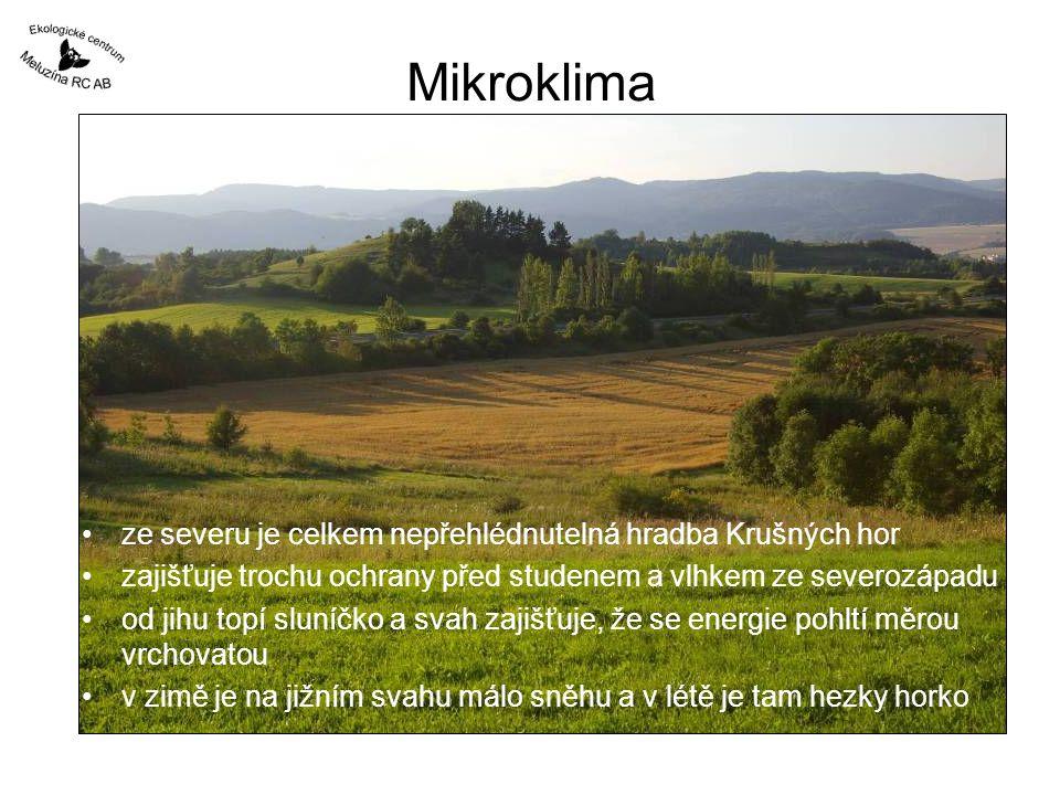 Mikroklima ze severu je celkem nepřehlédnutelná hradba Krušných hor