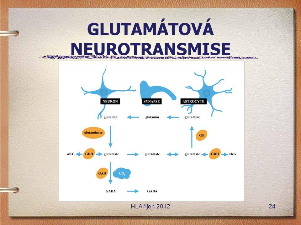 GLUTAMÁTOVÁ NEUROTRANSMISE