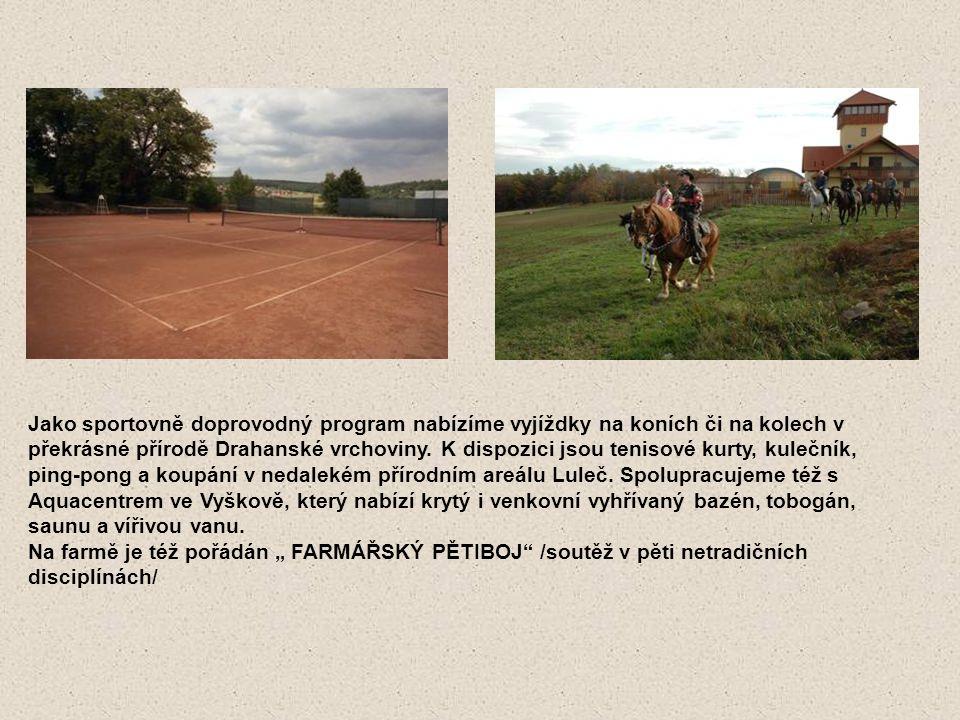 Jako sportovně doprovodný program nabízíme vyjíždky na koních či na kolech v překrásné přírodě Drahanské vrchoviny. K dispozici jsou tenisové kurty, kulečník,