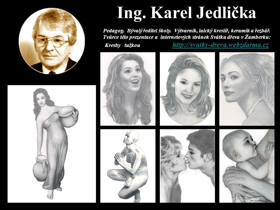 Ing. Karel Jedlička