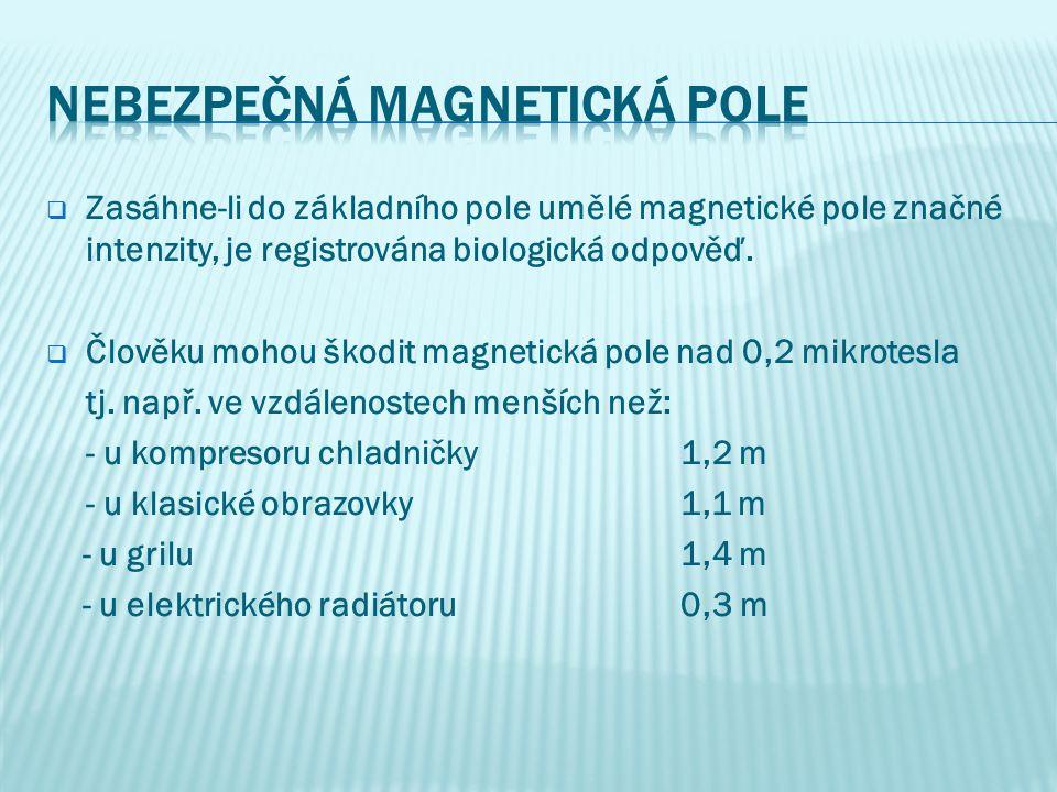 nebezpečná magnetická pole