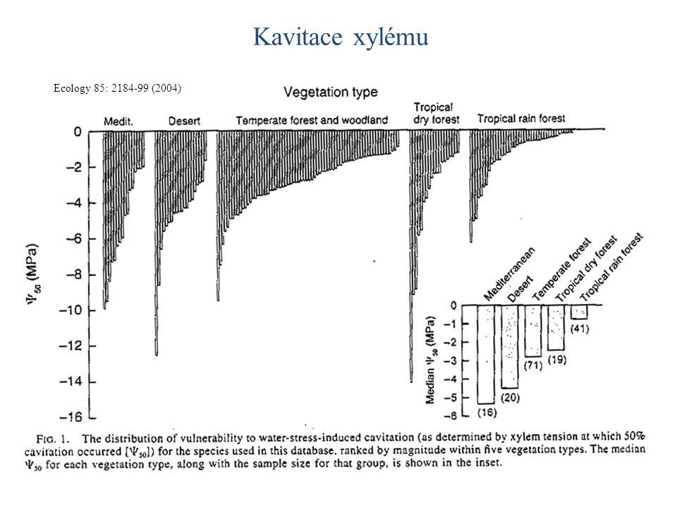 Kavitace xylému Ecology 85: 2184-99 (2004)