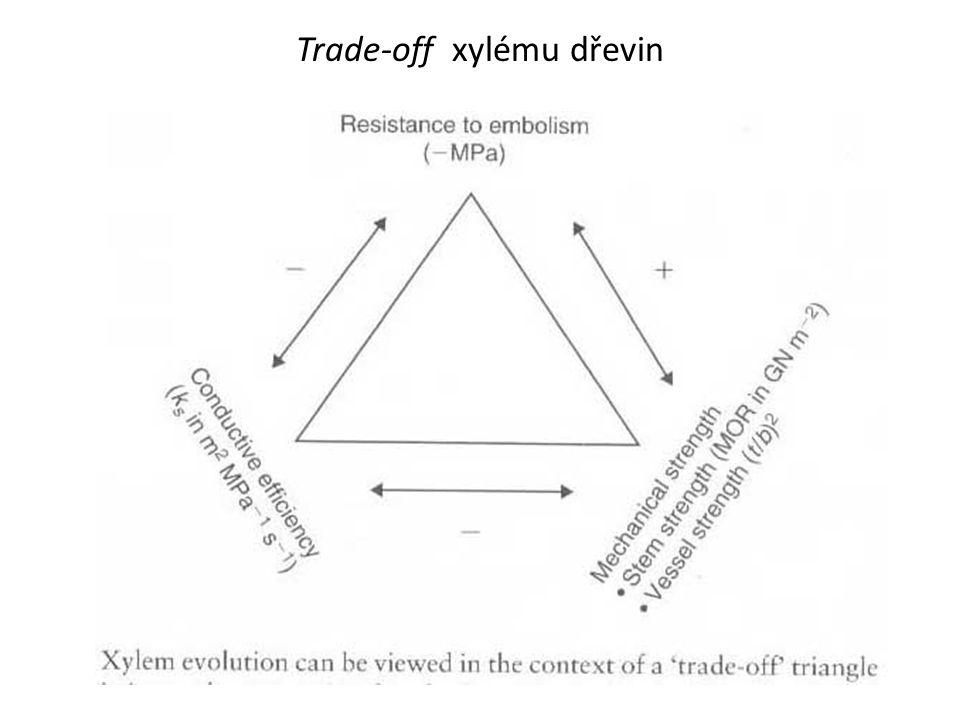 Trade-off xylému dřevin