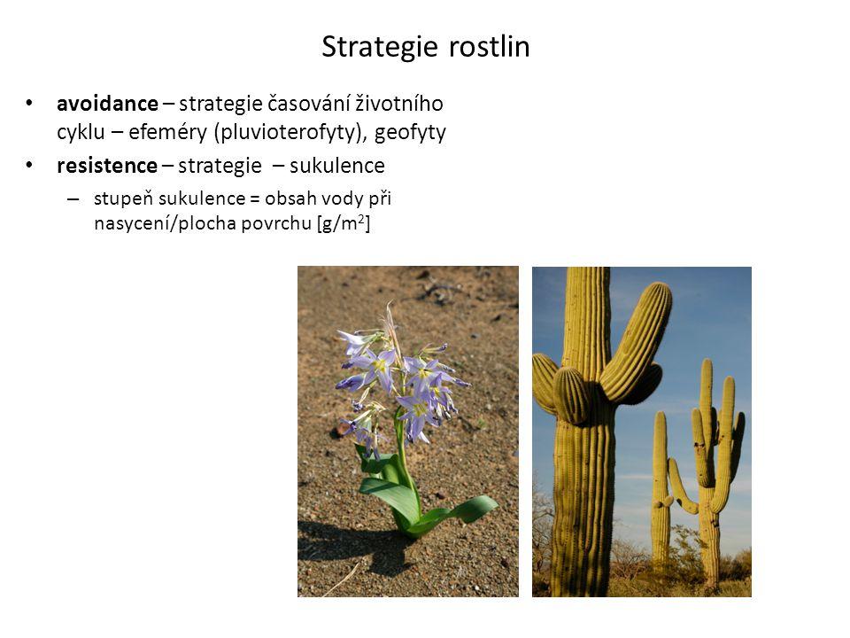 Strategie rostlin avoidance – strategie časování životního cyklu – efeméry (pluvioterofyty), geofyty.