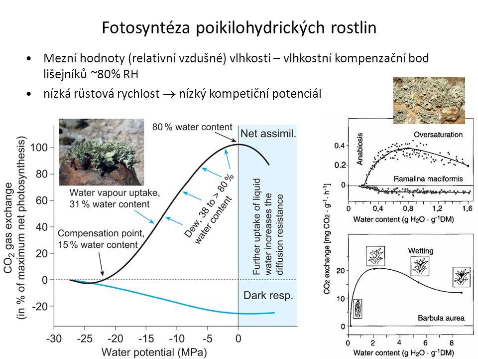 Fotosyntéza poikilohydrických rostlin