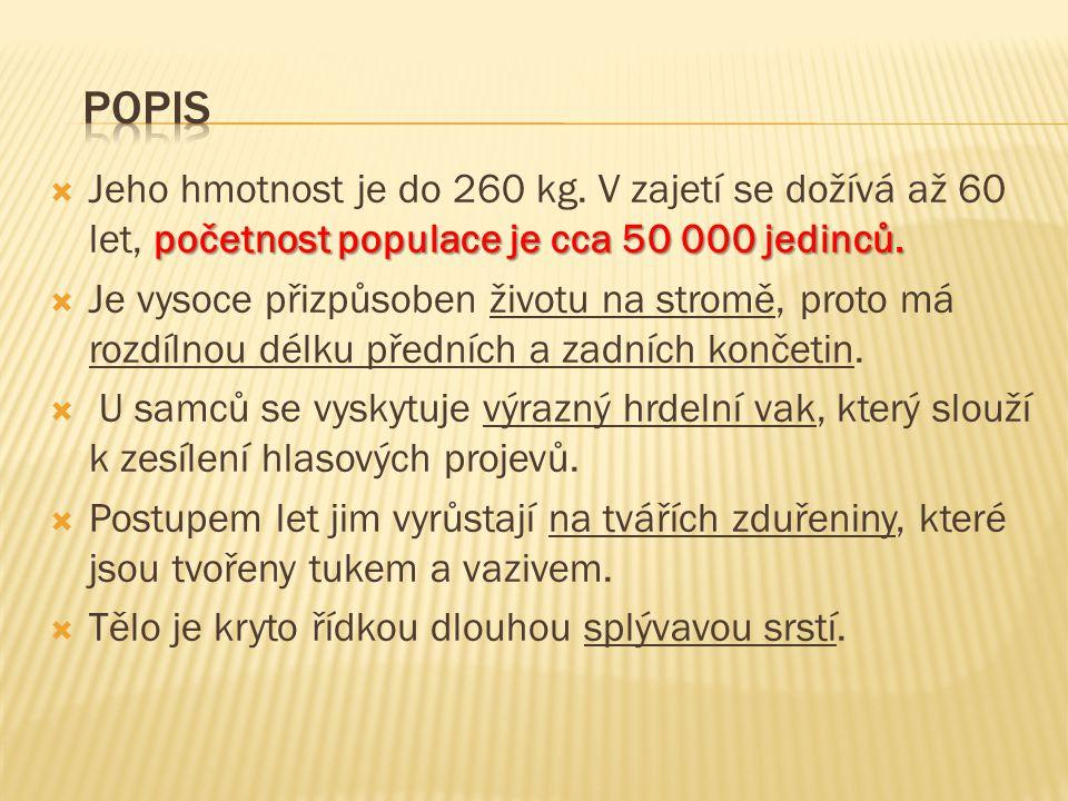 POPIS Jeho hmotnost je do 260 kg. V zajetí se dožívá až 60 let, početnost populace je cca 50 000 jedinců.