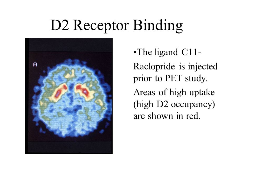 D2 Receptor Binding The ligand C11-