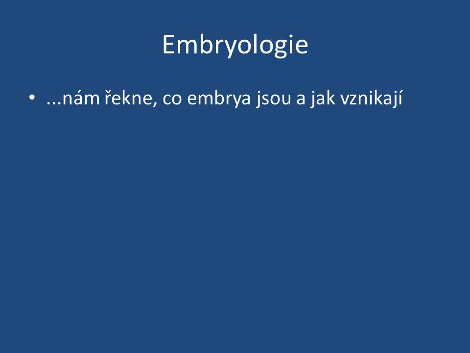 Embryologie ...nám řekne, co embrya jsou a jak vznikají