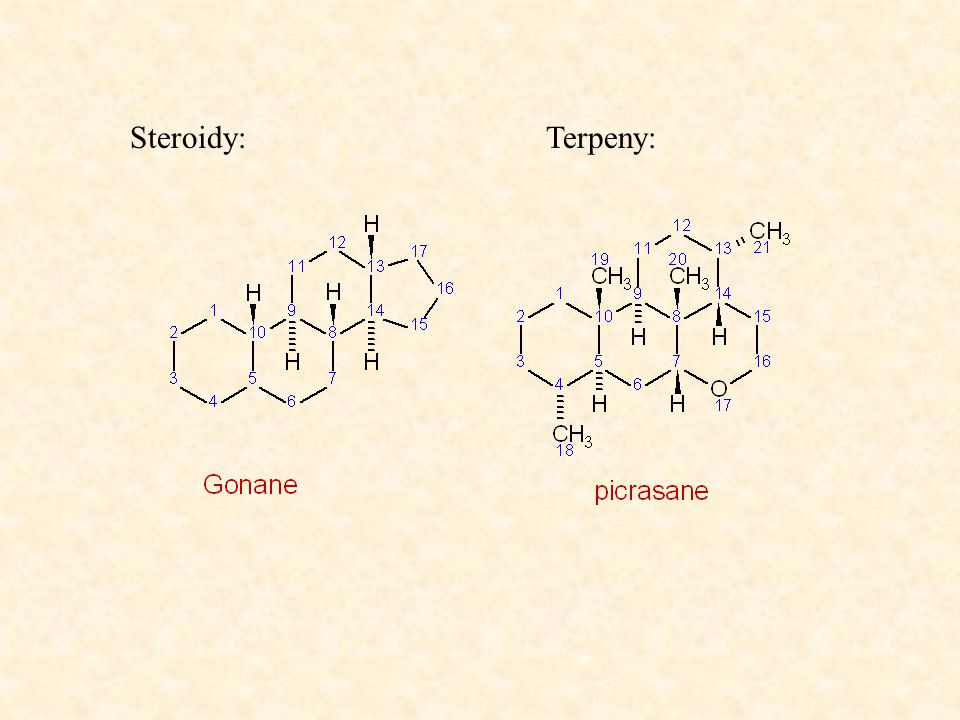 Steroidy: Terpeny: