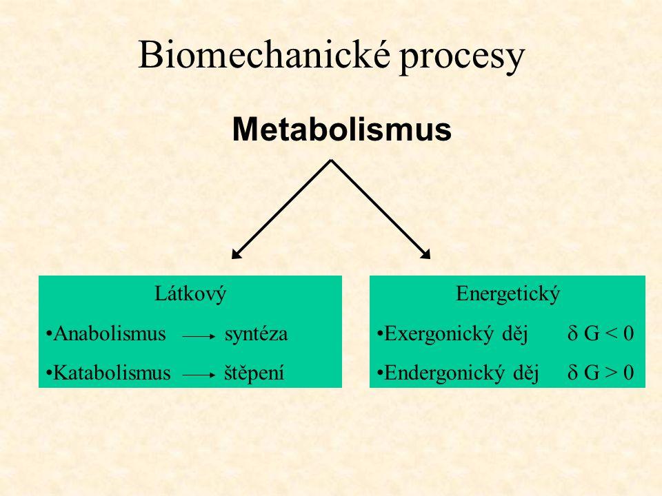 Biomechanické procesy