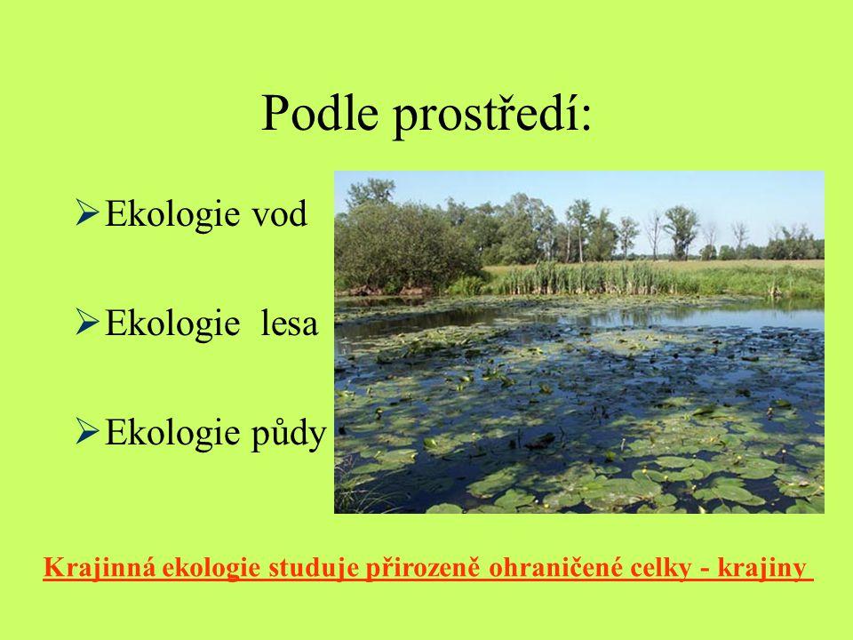Podle prostředí: Ekologie vod Ekologie lesa Ekologie půdy