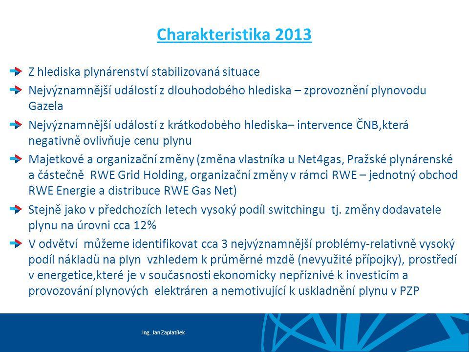 Charakteristika 2013 Z hlediska plynárenství stabilizovaná situace