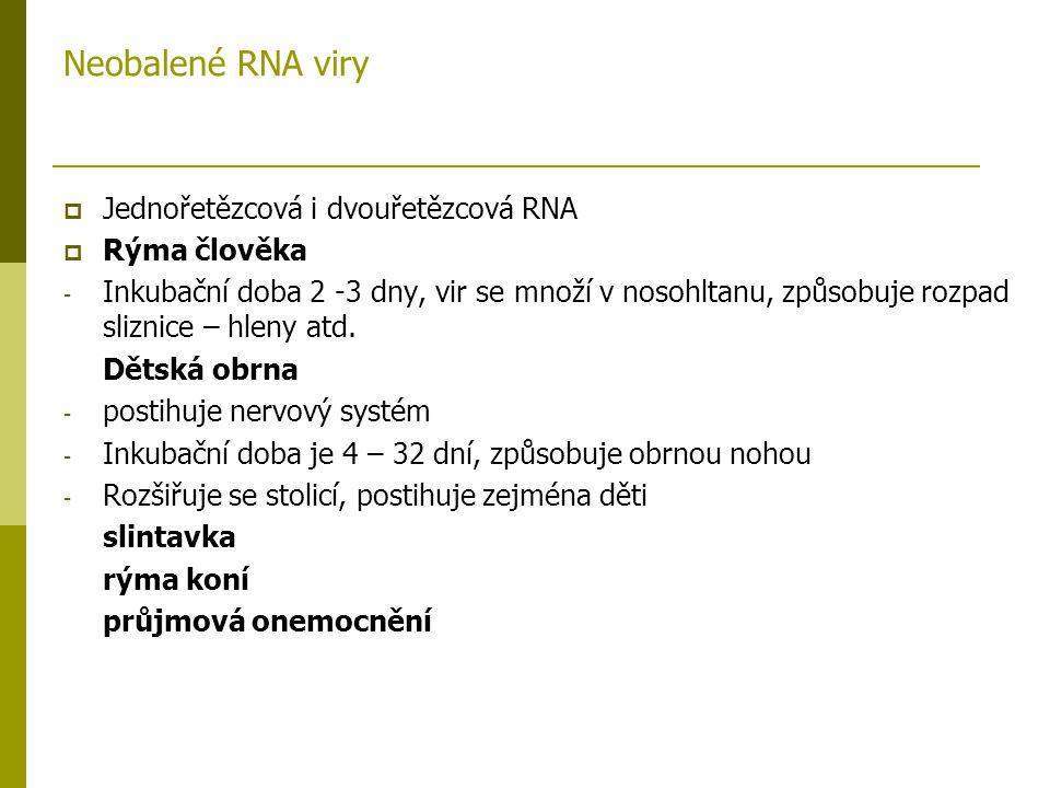 Neobalené RNA viry Jednořetězcová i dvouřetězcová RNA Rýma člověka