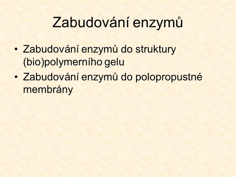 Zabudování enzymů Zabudování enzymů do struktury (bio)polymerního gelu