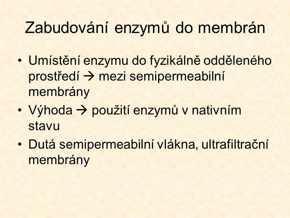 Zabudování enzymů do membrán