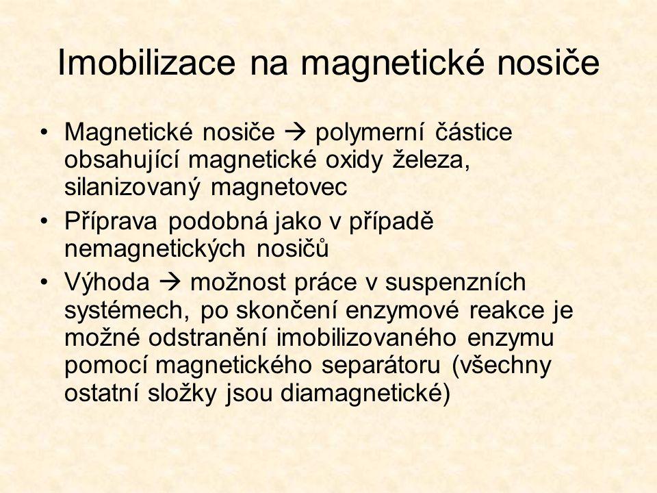 Imobilizace na magnetické nosiče