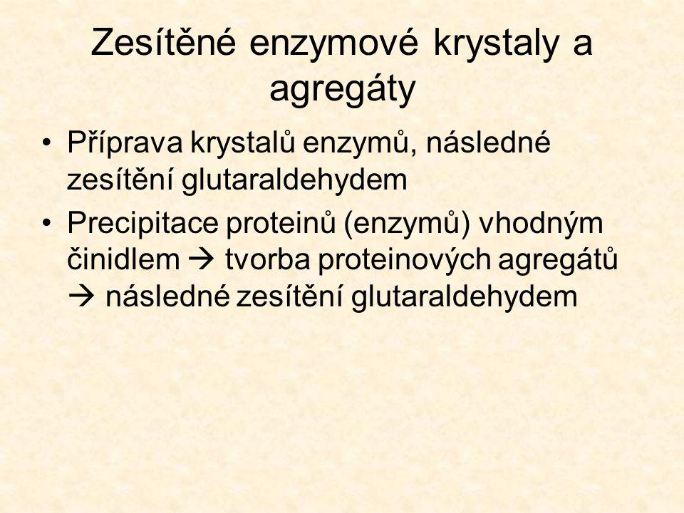 Zesítěné enzymové krystaly a agregáty