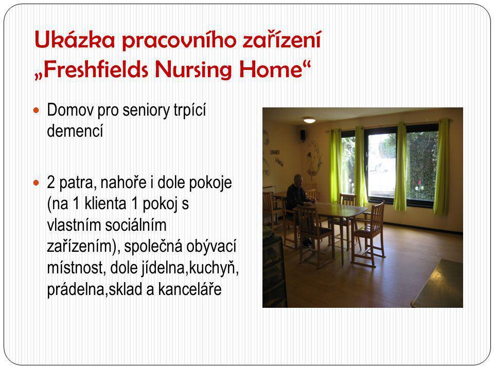 """Ukázka pracovního zařízení """"Freshfields Nursing Home"""