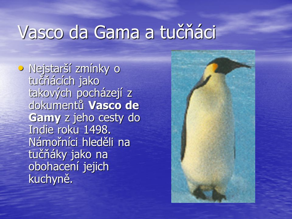 Vasco da Gama a tučňáci