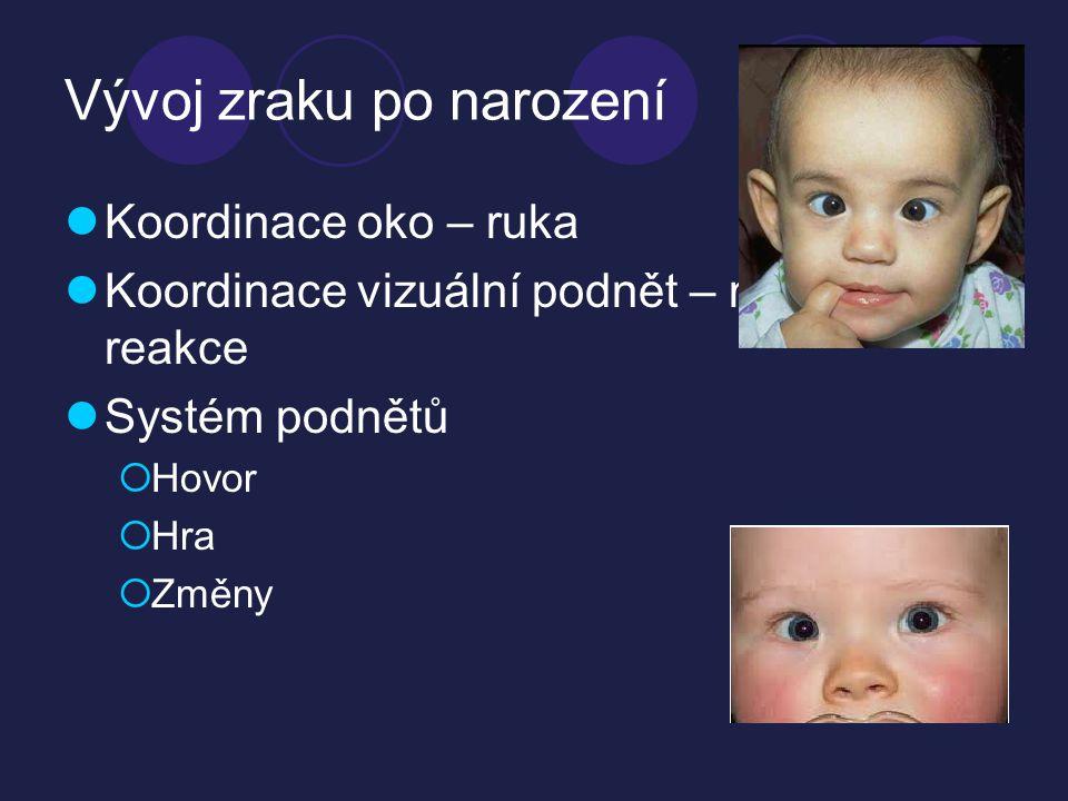 Vývoj zraku po narození