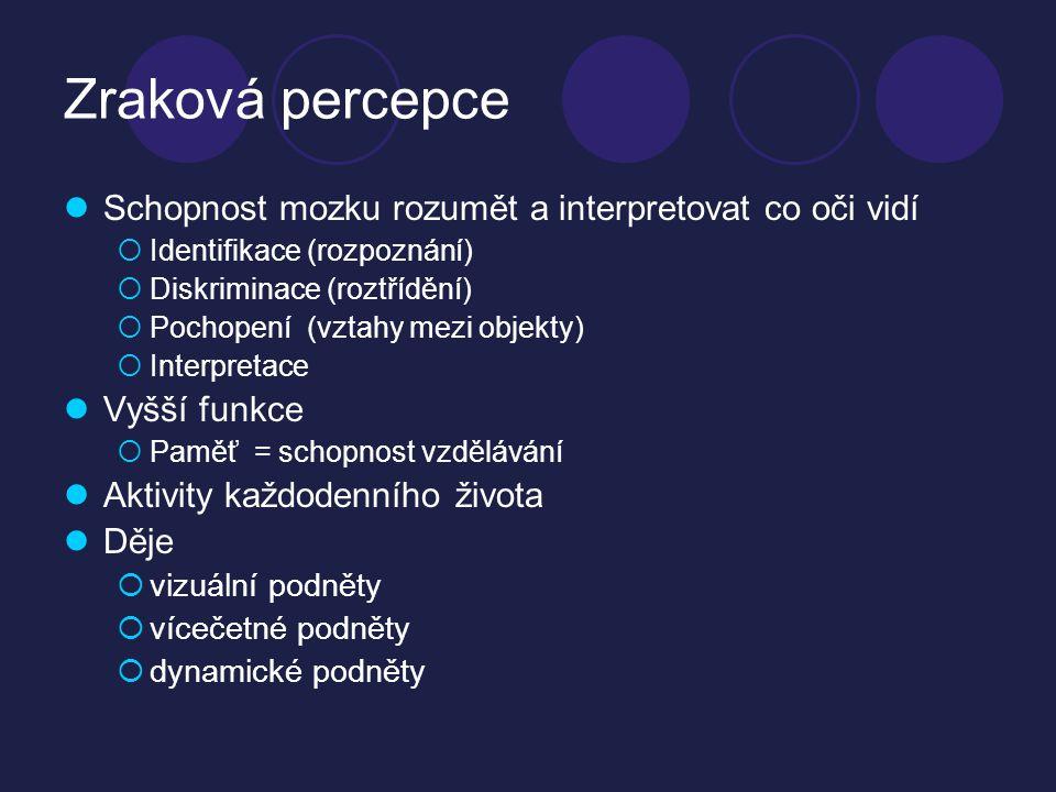Zraková percepce Schopnost mozku rozumět a interpretovat co oči vidí