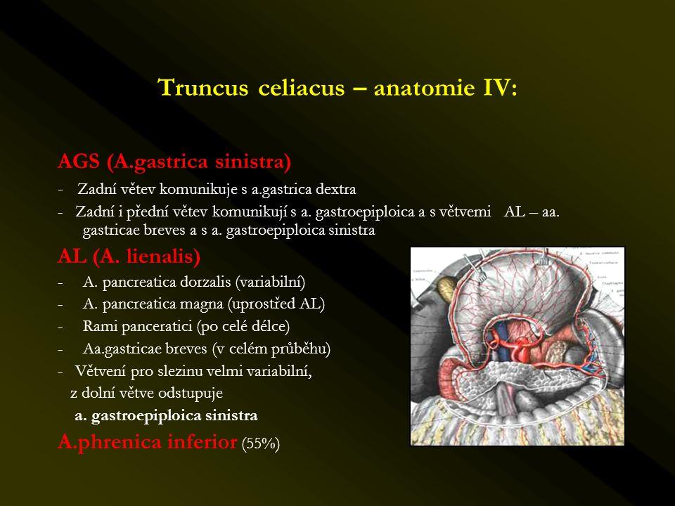 Truncus celiacus – anatomie IV: