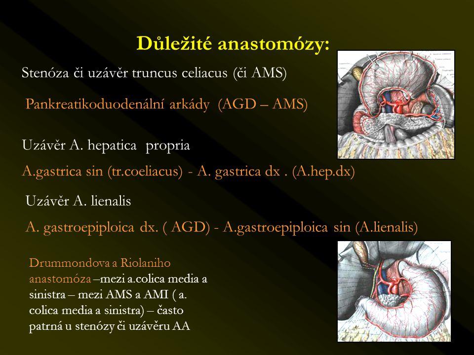 Důležité anastomózy: Stenóza či uzávěr truncus celiacus (či AMS)