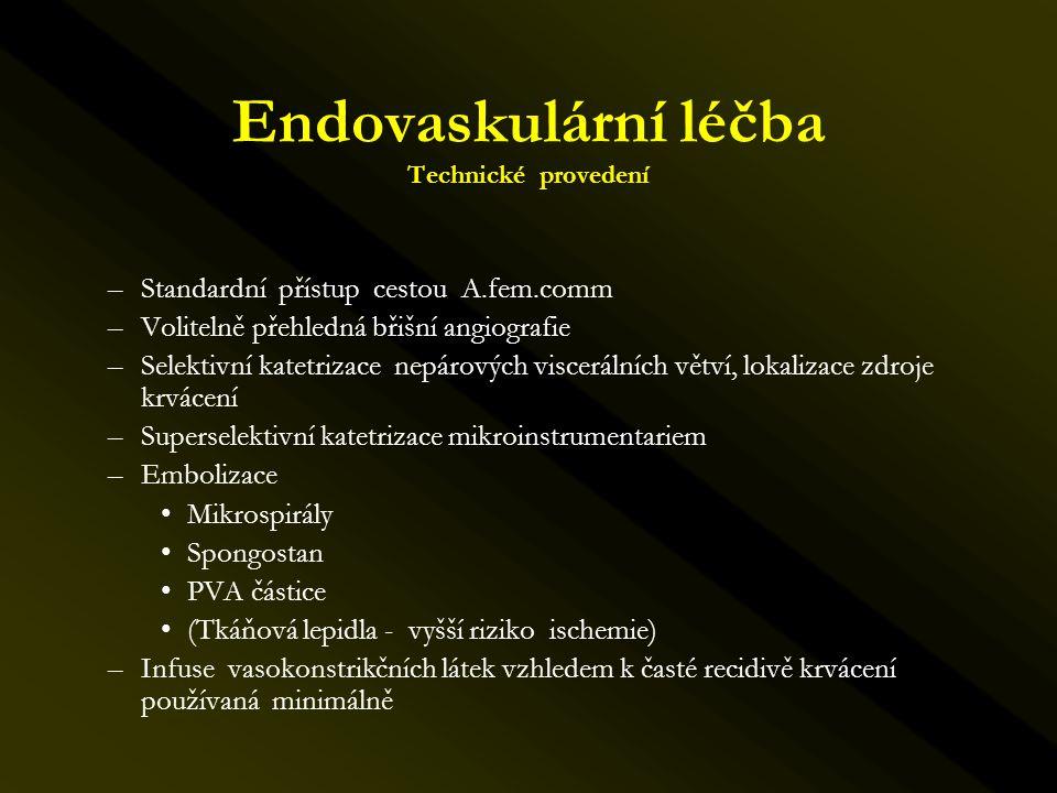 Endovaskulární léčba Technické provedení