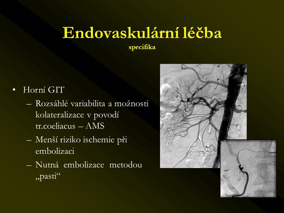 Endovaskulární léčba specifika