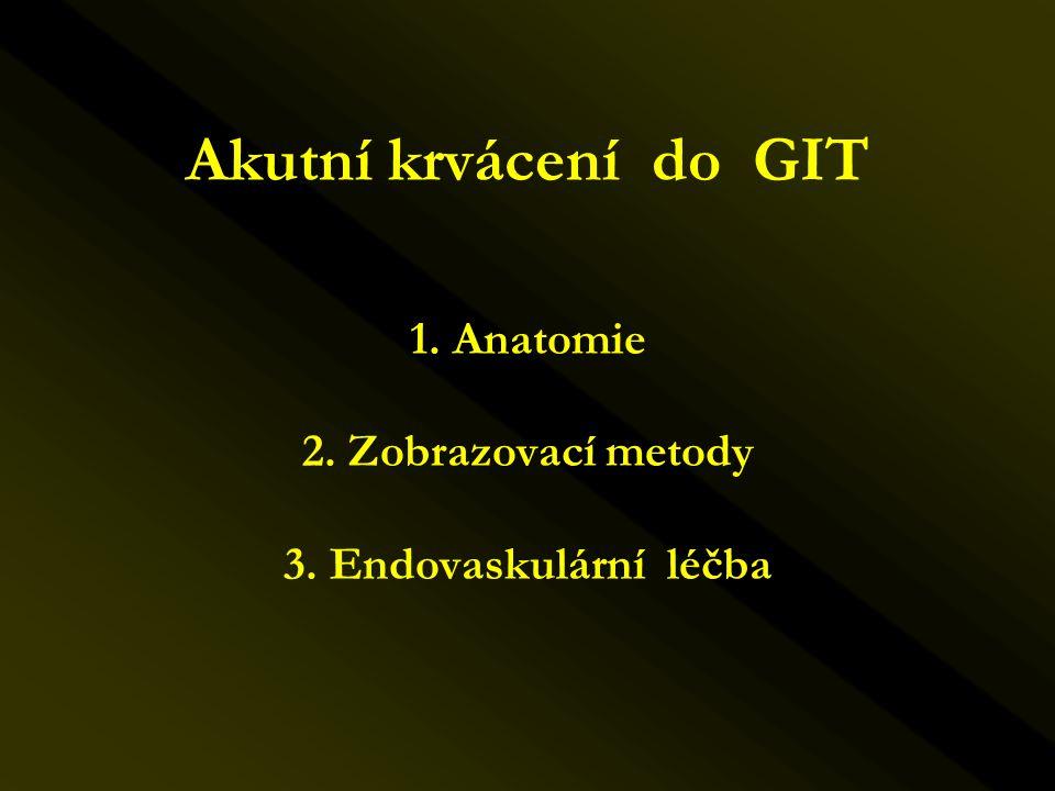 Akutní krvácení do GIT 1. Anatomie 2. Zobrazovací metody 3