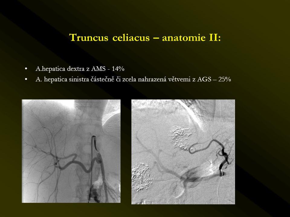 Truncus celiacus – anatomie II: