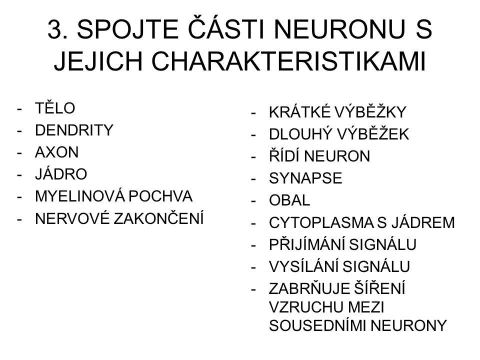3. SPOJTE ČÁSTI NEURONU S JEJICH CHARAKTERISTIKAMI