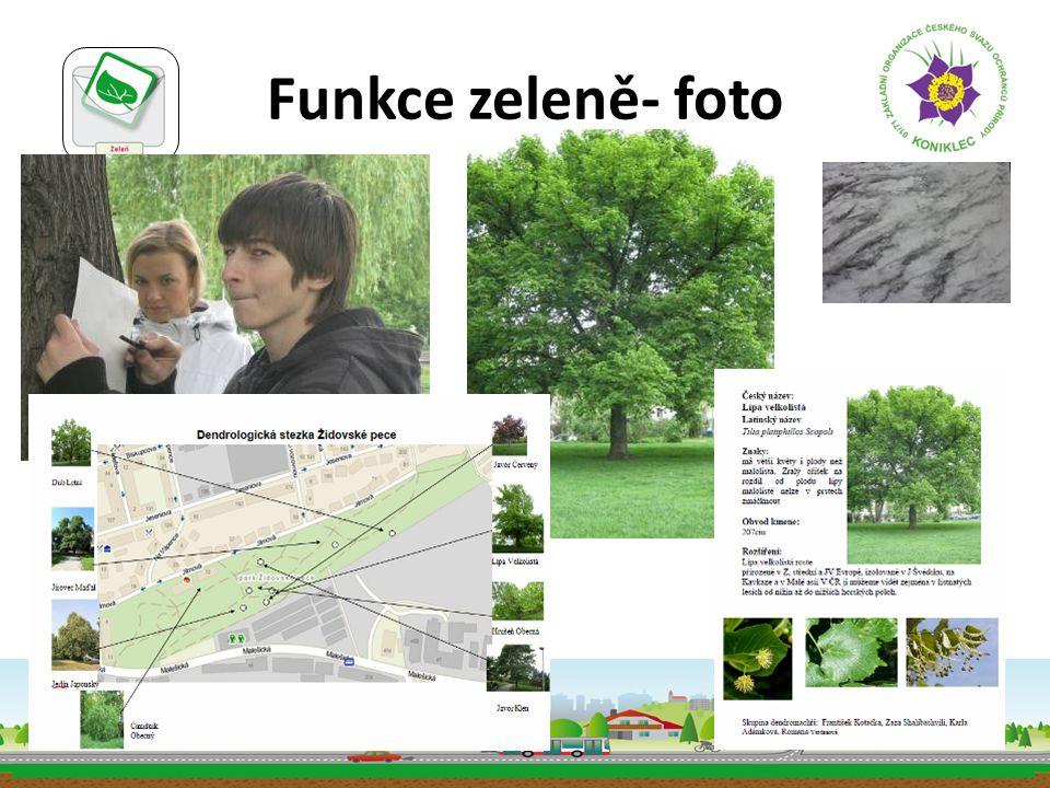 Funkce zeleně- foto