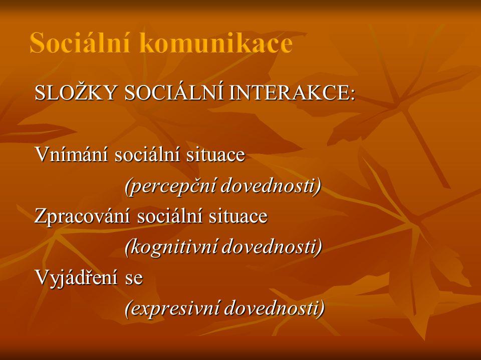 Sociální komunikace