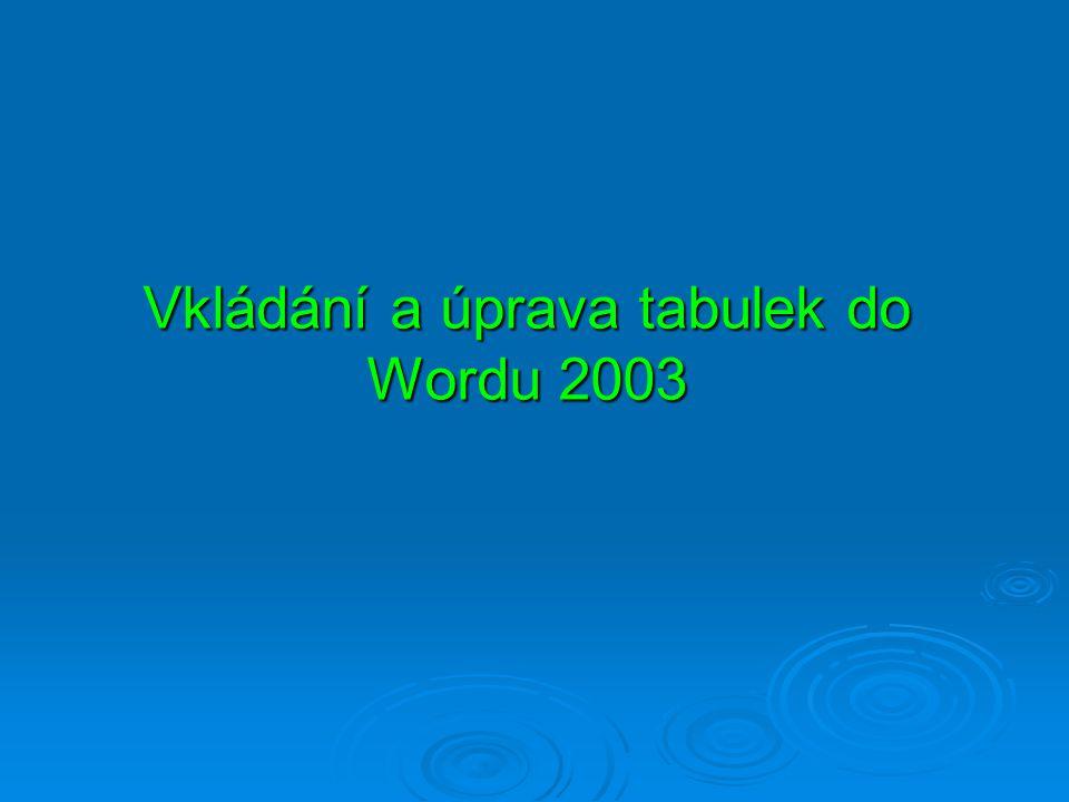 Vkládání a úprava tabulek do Wordu 2003