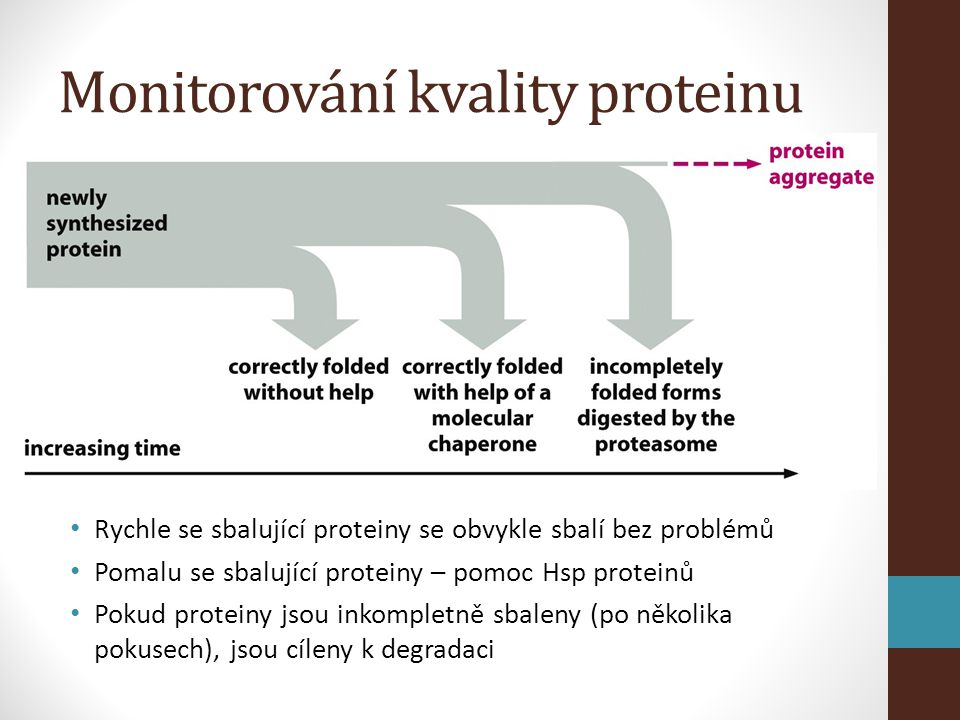 Monitorování kvality proteinu