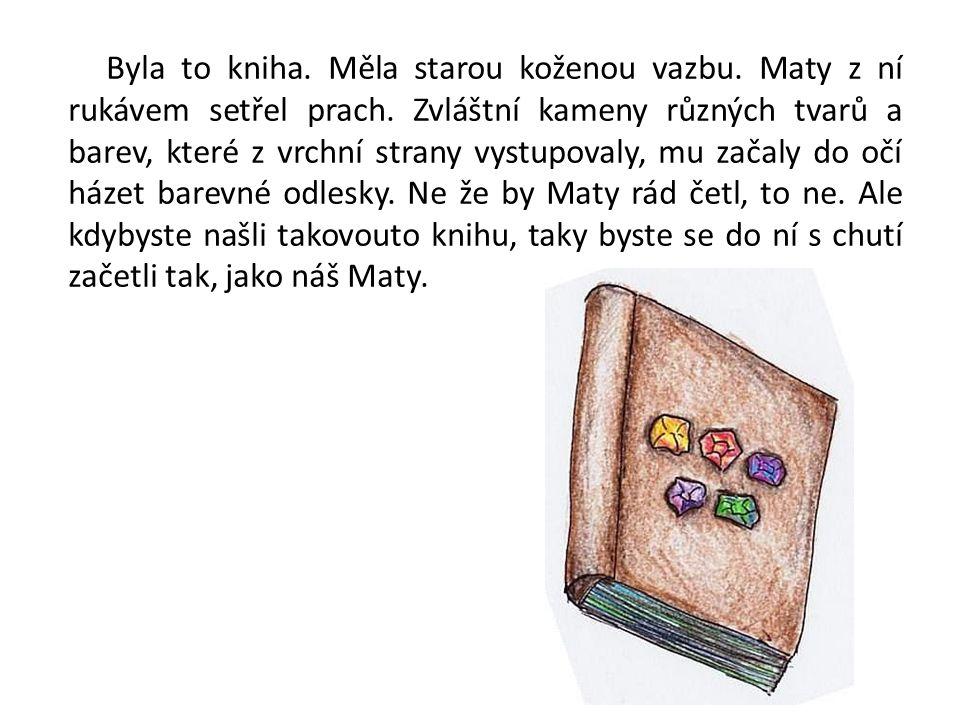 Byla to kniha. Měla starou koženou vazbu