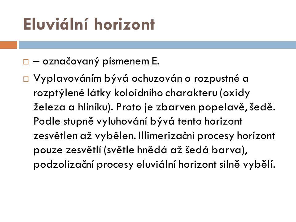 Eluviální horizont – označovaný písmenem E.