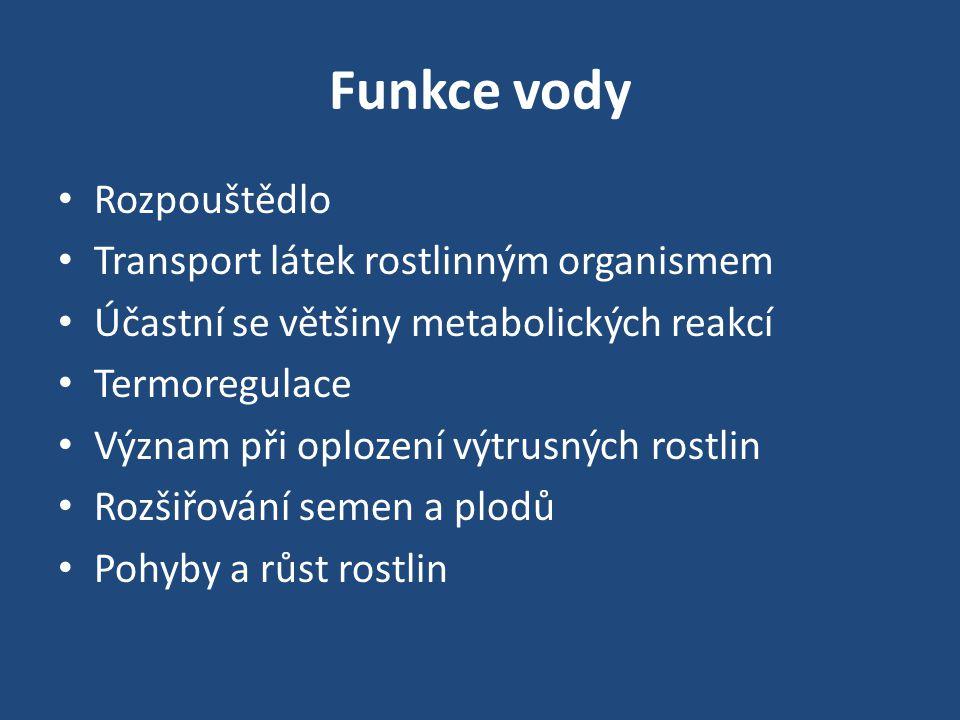 Funkce vody Rozpouštědlo Transport látek rostlinným organismem