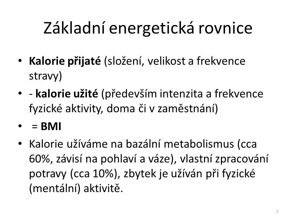 Základní energetická rovnice