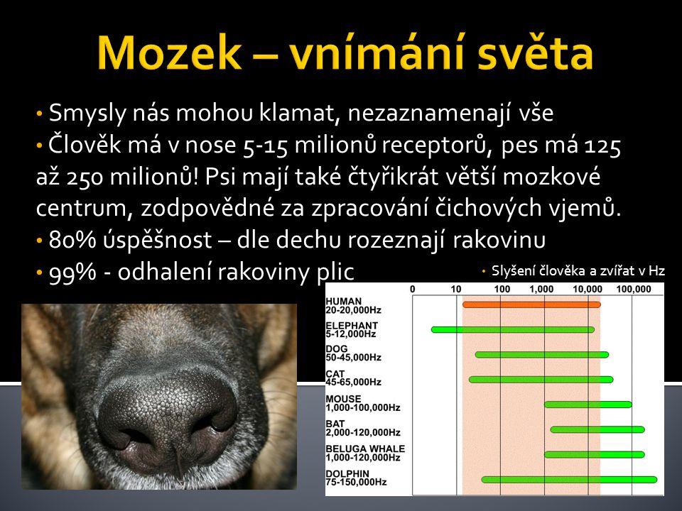 Slyšení člověka a zvířat v Hz