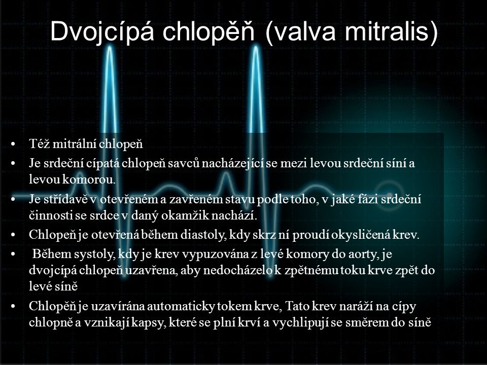 Dvojcípá chlopěň (valva mitralis)