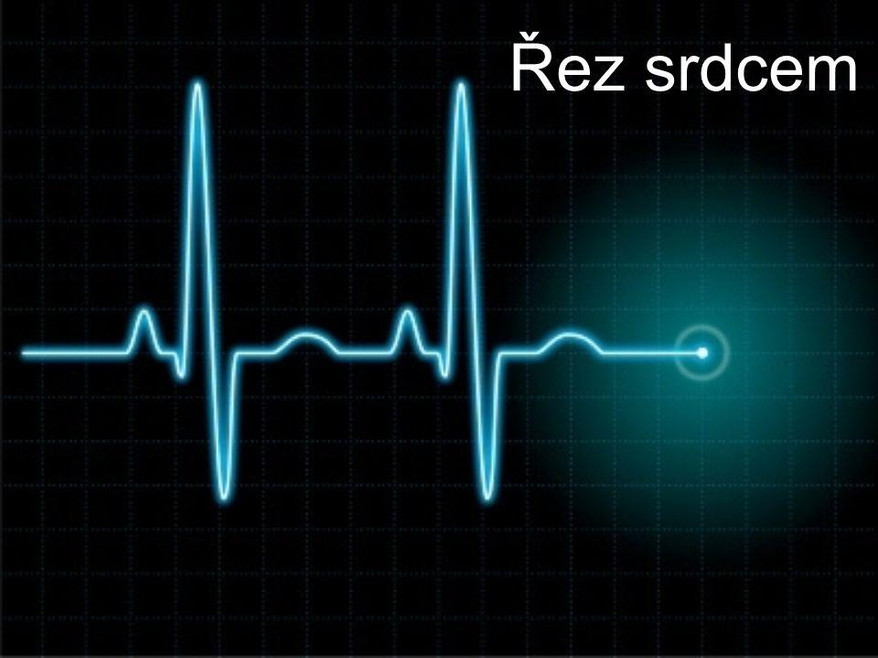 Řez srdcem