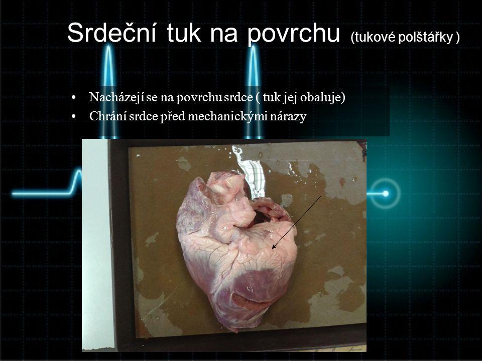 Srdeční tuk na povrchu (tukové polštářky )
