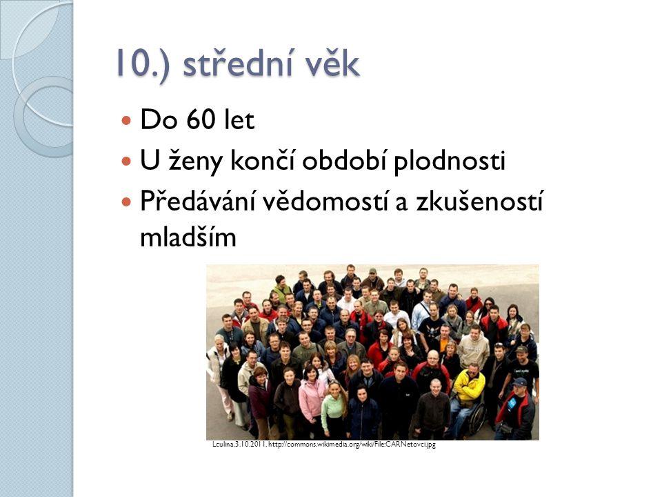 10.) střední věk Do 60 let U ženy končí období plodnosti