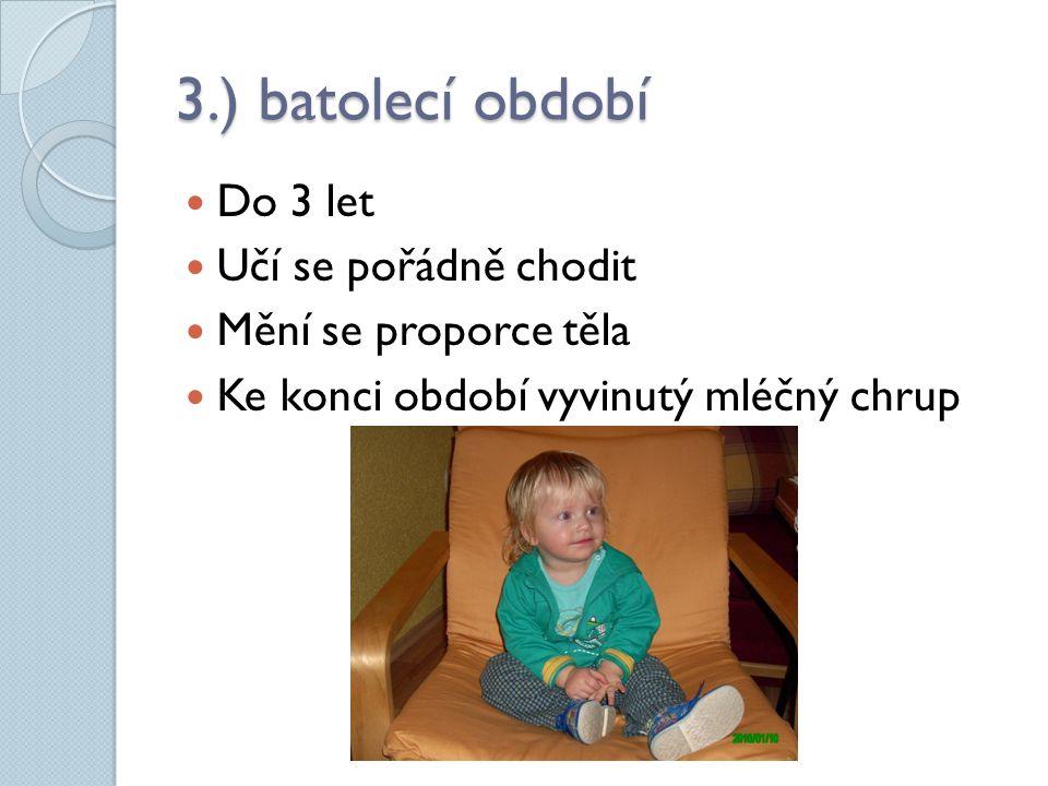 3.) batolecí období Do 3 let Učí se pořádně chodit