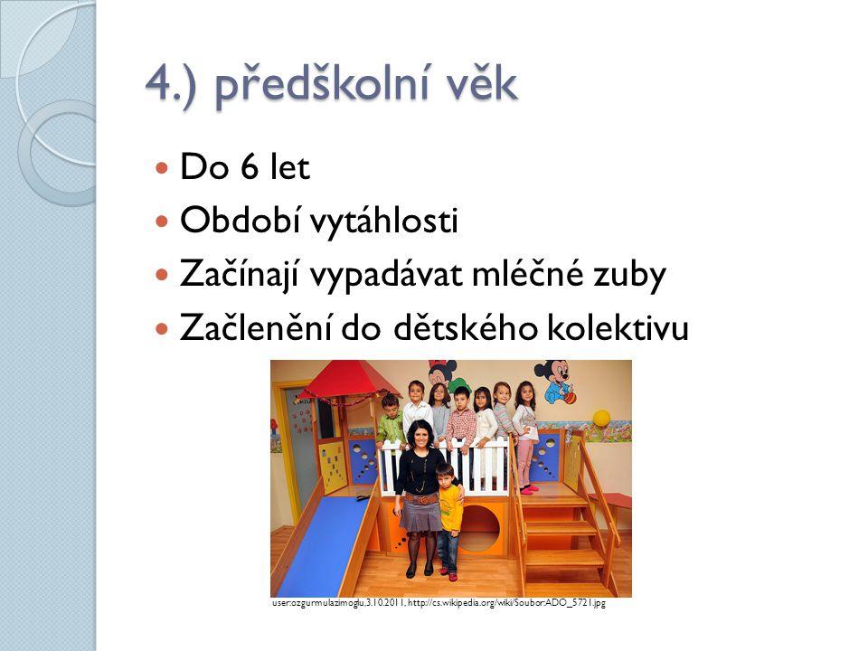 4.) předškolní věk Do 6 let Období vytáhlosti